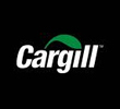 CARGILL AND RISOIL TO BUILD GRAIN TERMINAL AT ILLICHIVSK MERCHANT SEAPORT (ODESA REGION) BY 2014